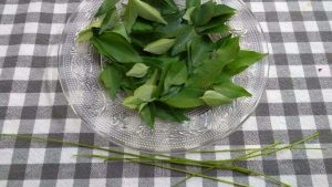 how to preserve curry leaves 1