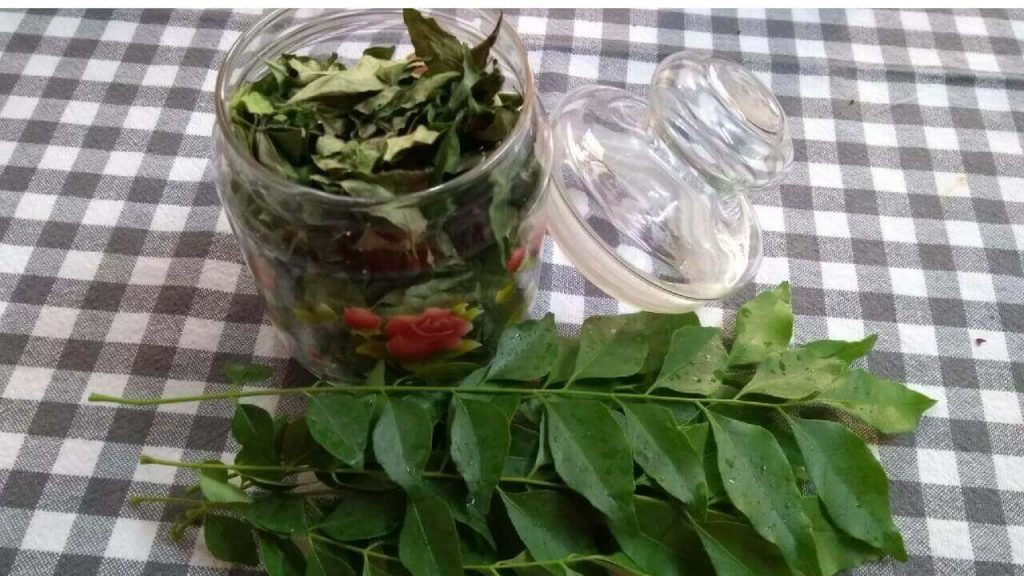 Preserving Curry Leaves/Kadi Patta