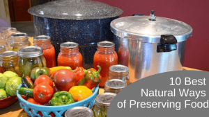 10 Best Natural Methods of Food Preservation